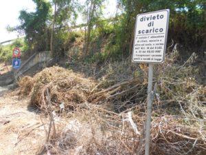 Ponte San Giovanni via Cestellini residui taglio alberi  002